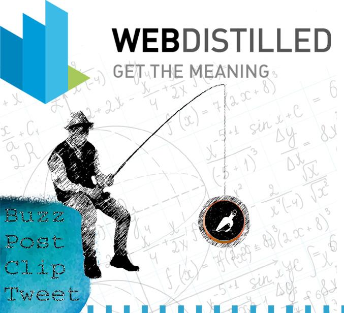 Webdistilled infografica